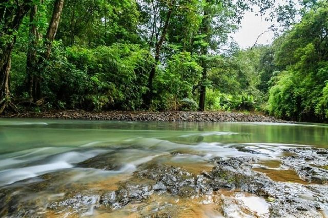 Vườn quốc gia Phước Bình