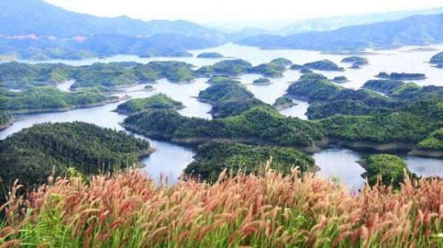 Vườn quốc gia Tà Đùng