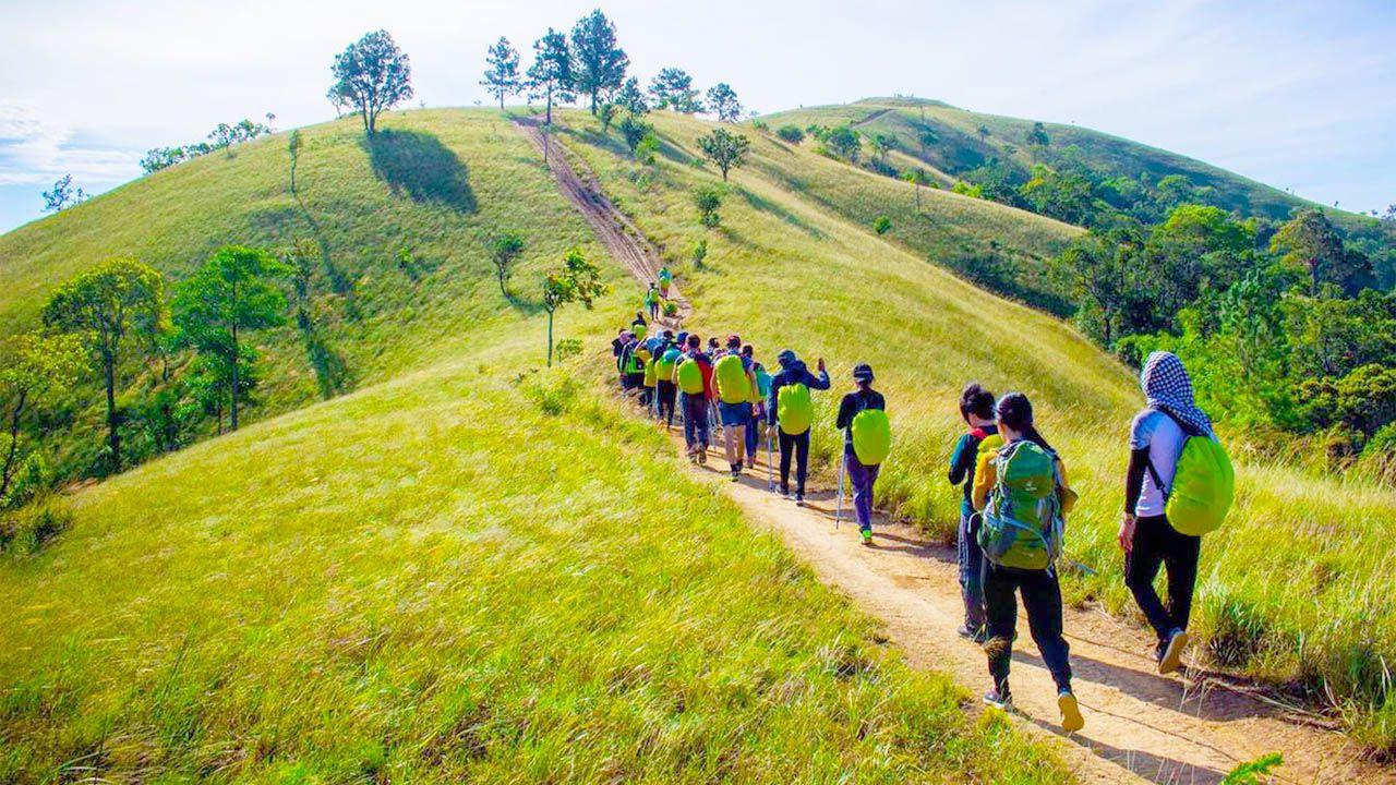 Hiking là gì? Phân biệt hiking và trekking trong du lịch